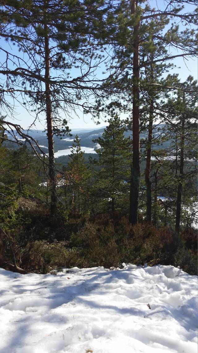 Rutberg view